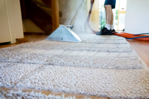 Ryde Carpet & Rug Cleaning