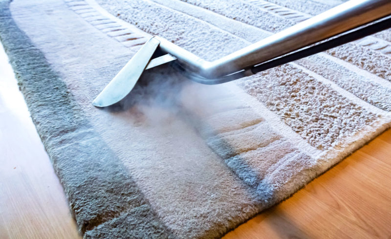 Ryde carpet rug steam cleaning 2019 march