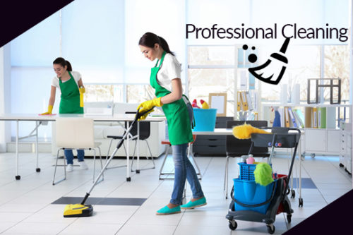 Reasons to Choose Professional Cleaning